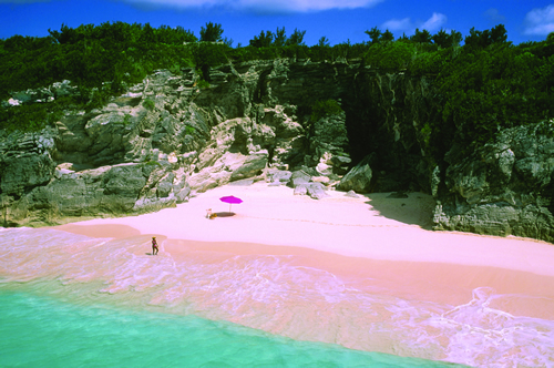 pink-sand-resort